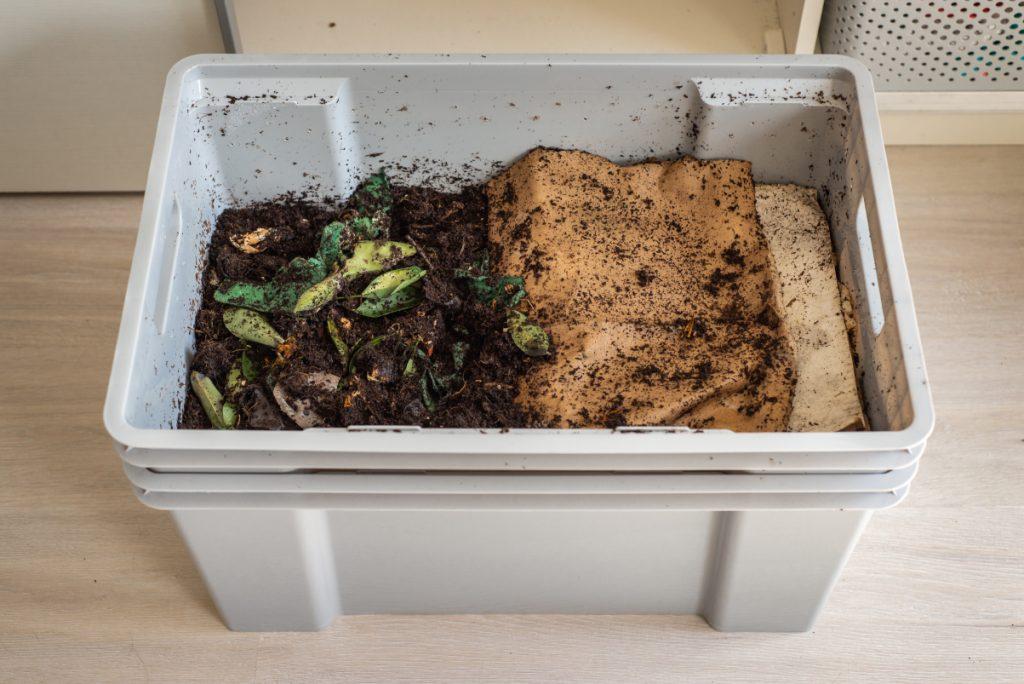 Composting used tea bags in compost bin