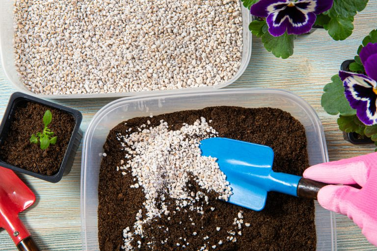 Mixing Perlite with plant soil