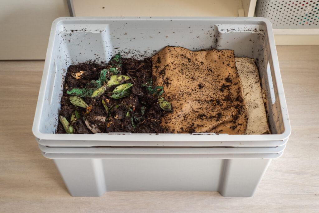 Composting flowers in worm bin
