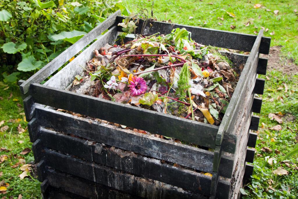 Dried flowers in composting bin